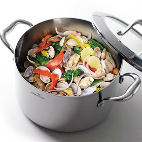 HOMI CHEF Mirror Polished Nickel Free Stainless Steel 6 QT Stock Pot with Glass Lid